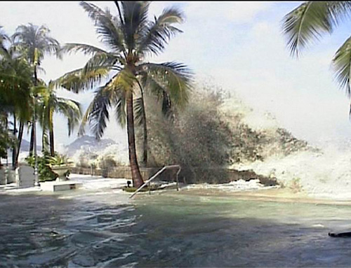 цунами5
