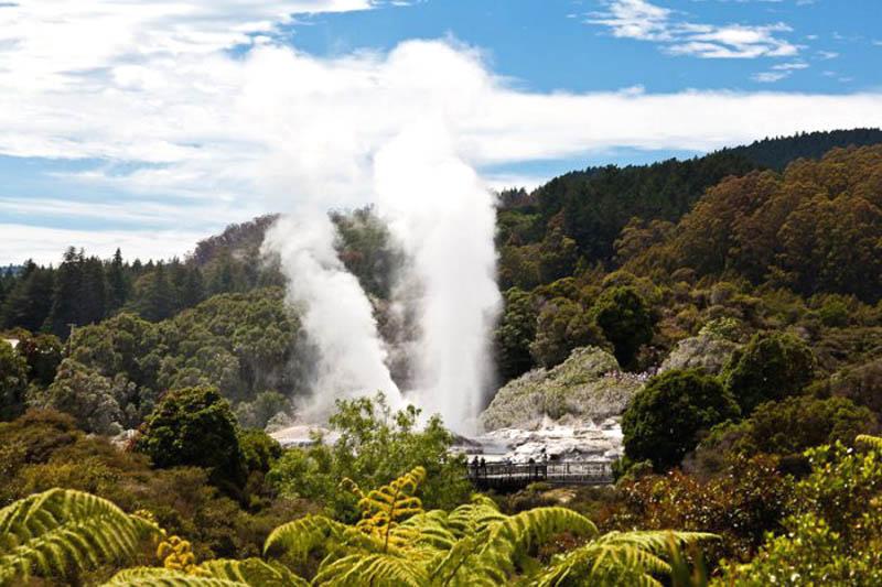 Гейзер в Новой Зеландии2