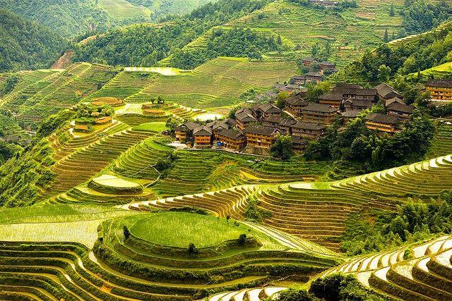 Террасные рисовые поля «Лунцзи»