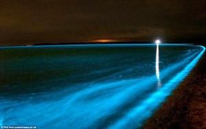 Биолюминесцентные лагуны3
