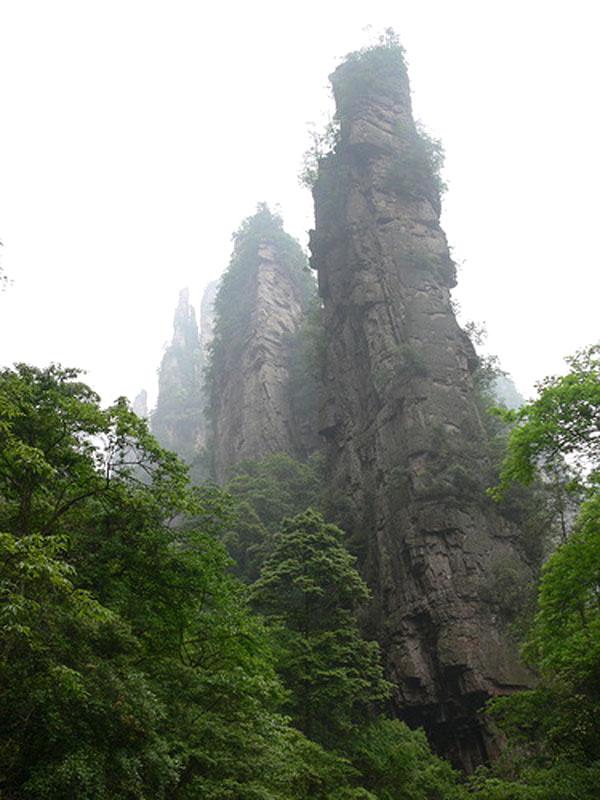 Каменный-лес4