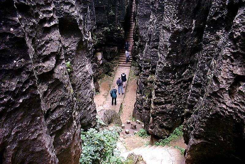Каменный-лес5
