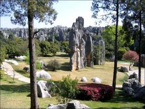 Каменный-лес8