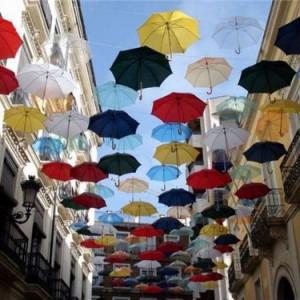 зонт6