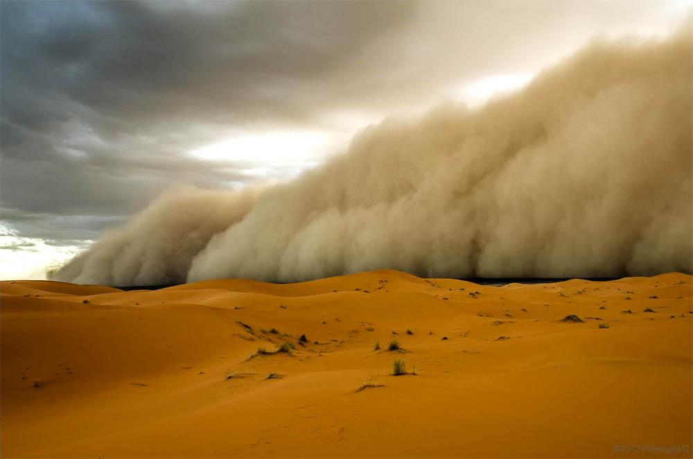 Песчаная буря в пустыне поднимает тонны пыли
